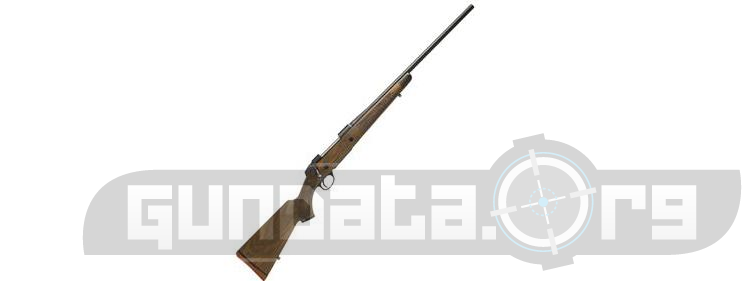 Beretta Sako 85 Classic Photo 2