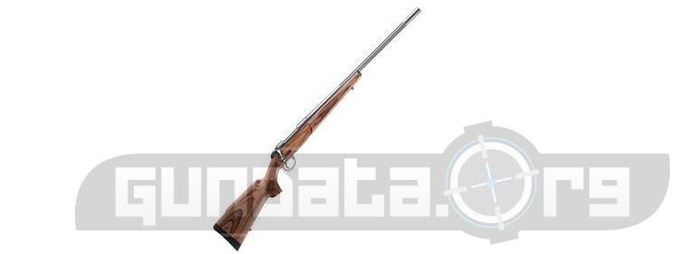 Beretta Sako 85 Varmint Laminated Stainless Photo 2