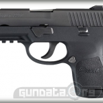 P250 Sub Compact Nitron Rail Photo 1