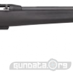Remington 597 AAC SD Photo 1