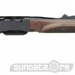 Remington 750 Woodsmaster Photo 1