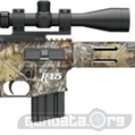 Remington R-15 450 Bushmaster Photo 3