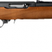 Ruger 10 22 Compact