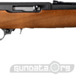 Ruger 10 22 Compact Photo 1
