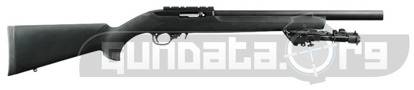 Ruger 10 22 Tactical Photo 2