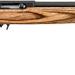 Ruger 10 22 Target