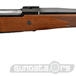 Ruger M77 Hawkeye Compact Magnum Photo 1