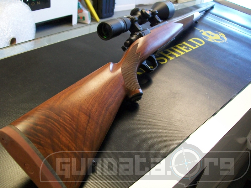 Ruger M77 Hawkeye Left Handed Photo 4