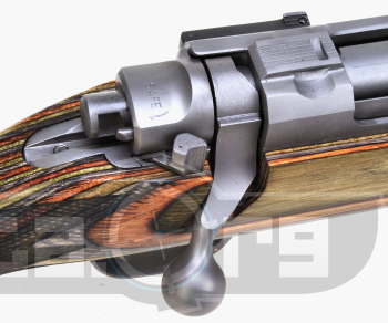Ruger M77 Hawkeye Predator Photo 3