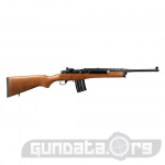 Ruger Mini 14 Photo 2