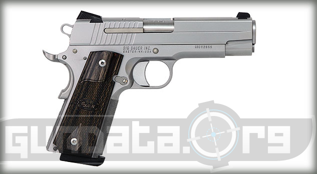 Sig Sauer 1911 Carry Stainless Photo 2