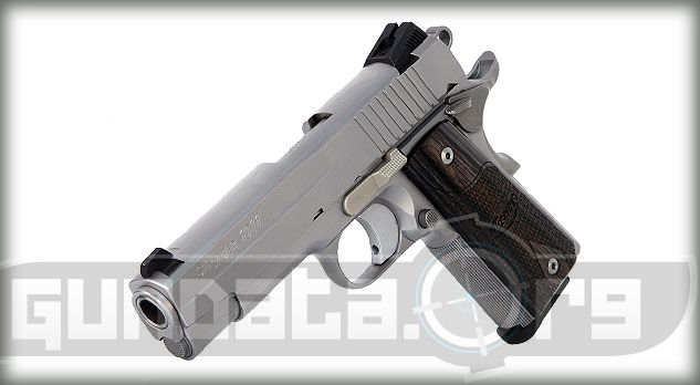 Sig Sauer 1911 Carry Stainless Photo 5