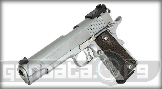 Sig Sauer 1911 Traditional Match Elite Stainless Photo 5