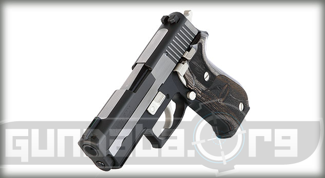 Sig Sauer P220 Carry Equinox Photo 3