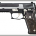 Sig Sauer P220 Equinox