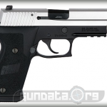 Sig Sauer P220 Two Tone DAK Photo 2