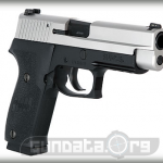 Sig Sauer P220 Two Tone DAK Photo 3