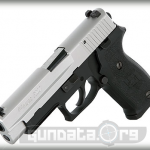 Sig Sauer P220 Two Tone DAK Photo 5