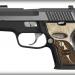 Sig Sauer P224 Equinox