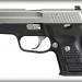 Sig Sauer P224 Nickel