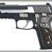 Sig Sauer P229 Equinox