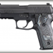 Sig Sauer P229 Extreme