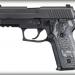 Sig Sauer P229 Extreme