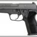 Sig Sauer P229 SAS Gen 2 Photo 1