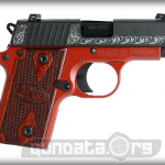 Sig Sauer P238 Lady Photo 2