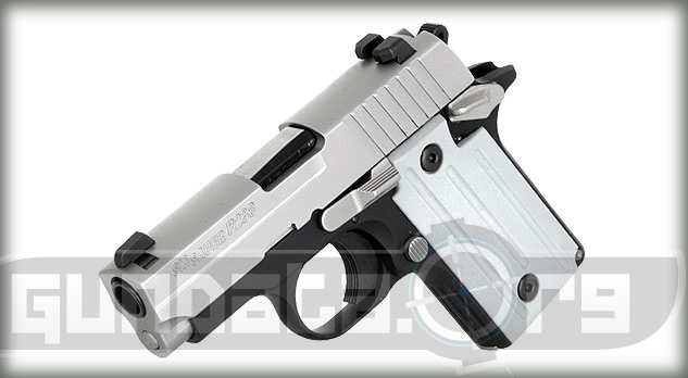 Sig Sauer P238 Two Tone Photo 5
