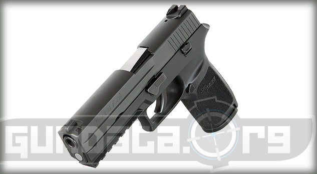 Sig Sauer P250 Full Size Photo 3