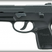 Sig Sauer P250 Subcompact Nitron