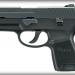 Sig Sauer P250 Subcompact Nitron