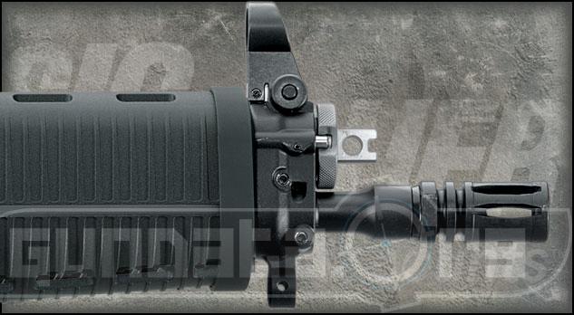 Sig Sauer P556 Pistol Photo 4