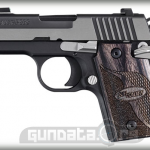 Sig Sauer P938 Equinox Photo 1