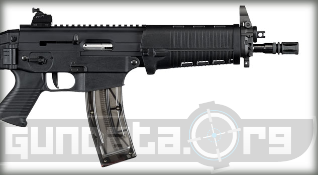 Sig Sauer SIG522 Classic 10 Photo 3