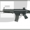 Sig Sauer SIG556 Patrol Rifle Photo 1