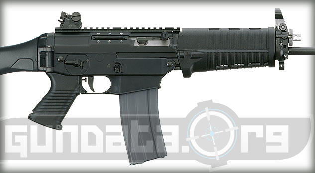 Sig Sauer SIG556 Patrol Rifle Photo 4