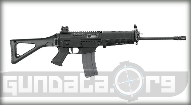Sig Sauer SIG556 Patrol Rifle Photo 2
