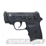 Smith and Wesson Bodyguard 380 Photo 1