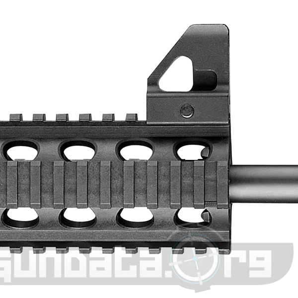Smith and Wesson M and P15-22 Photo 2