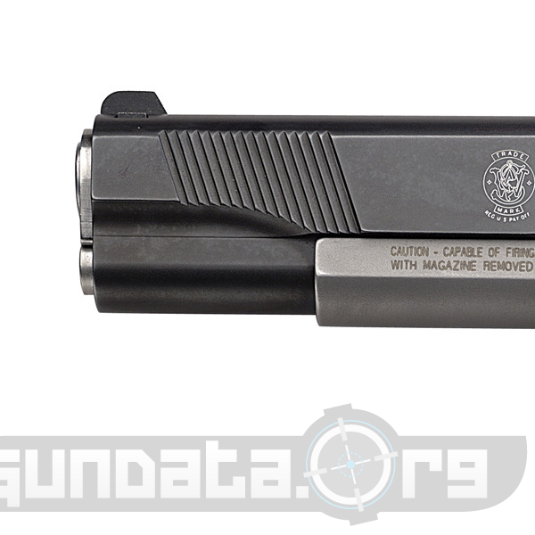 Smith and Wesson Model SW1911DK Photo 2