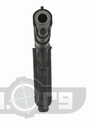 Smith and Wesson SW1911 TFP Photo 5