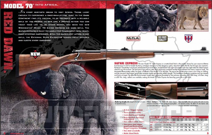 Winchester Model 70 Safari Express Photo 3