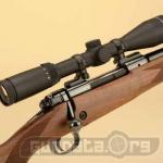 Winchester Model 70 Super Grade Photo 4