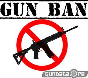 Gun Control in 2013