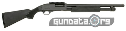 Interstate Arms Black GA Defender